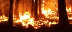 Catastrophes naturelles: la facture du gouvernement fédéral ne cesse d'augmenter