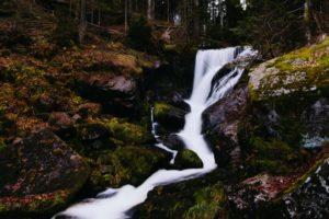 Cueillir l'eau de Pâques : une tradition toujours agréable